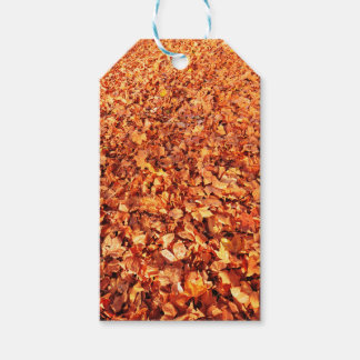 Leaves carpet in autumn gift tags