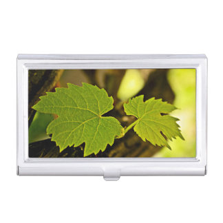 Leaves From The Grape Growing Out Of A Tree Case For Business Cards