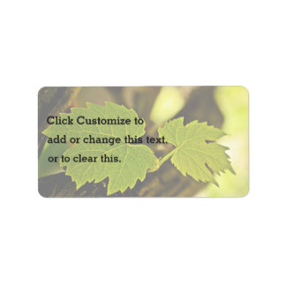 Leaves From The Grape Growing Out Of A Tree Address Label