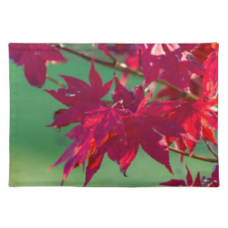 leaves in autumn placemat
