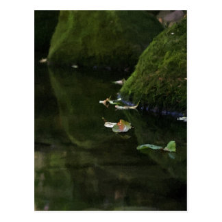 Leaves in River Pool Artwork Postcard