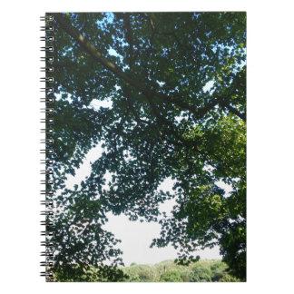 Leaves in Sunshine Notebooks