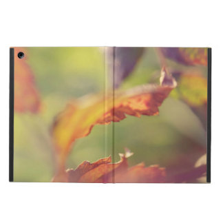 Leaves in the wind iPad air cover