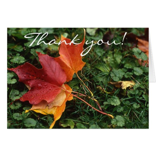 Leaves Landscape - Thank you! Card