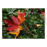 Leaves Landscape - Thank you! Cards