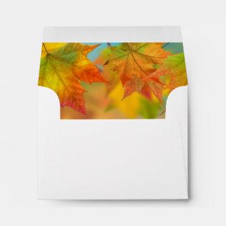 Leaves of Autumn RSVP Envelopes