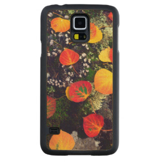 Leaves on a lichen covered rock, Rocky Mountains Carved Maple Galaxy S5 Case