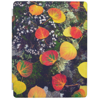 Leaves on a lichen covered rock, Rocky Mountains iPad Cover