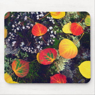 Leaves on a lichen covered rock, Rocky Mountains Mouse Pad