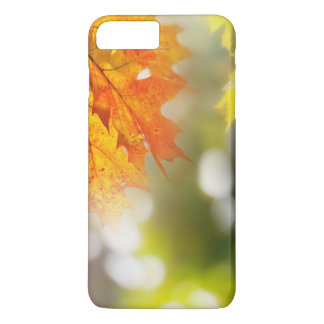 Leaves on the branches in the autumn forest iPhone 8 plus/7 plus case