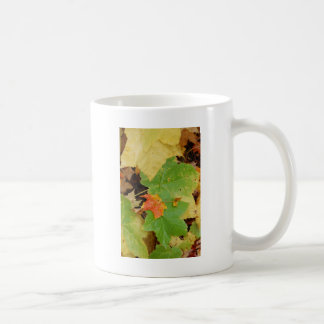 leaves on  the ground Zazzle.JPG Coffee Mug
