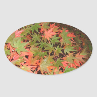 Leaves Oval Sticker