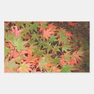 Leaves Rectangular Sticker