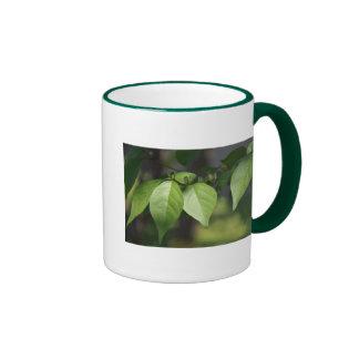 Leaves Ringer Mug