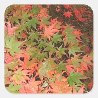 Leaves Square Sticker