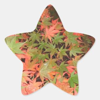 Leaves Star Sticker