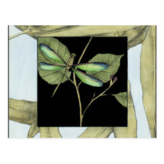 Leaves with Dragonfly Inset by Jennifer Goldberger Postcard