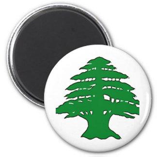 Lebanese Cedar 6 Cm Round Magnet