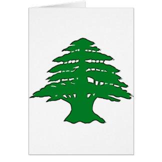 Lebanese Cedar Greeting Card