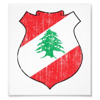 Lebanon Coat Of Arms Art Photo