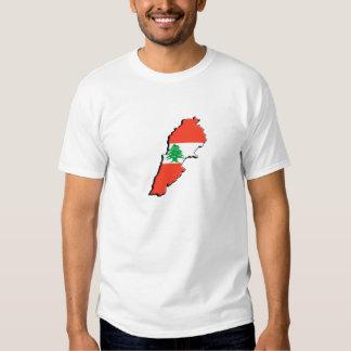 Lebanon Flag 3D Men's t-Shirt