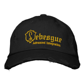 Lebesgue Integration Embroidered Cap