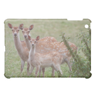 led Deer with Fawn Cover For The iPad Mini