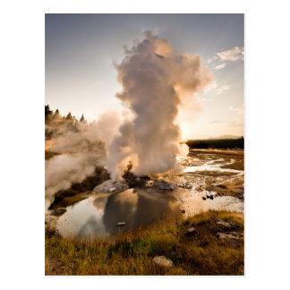 Ledge Geyser, Norris Geyser Basin Postcard