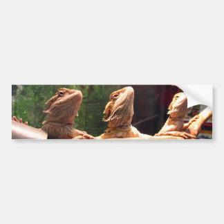 Leezard Trio Bumper Sticker