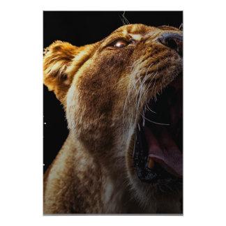 Legendary Lion Photo Art
