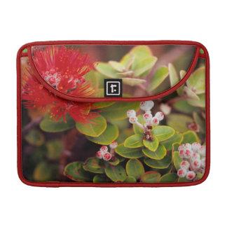 Lehua Blossoms In Hawaii Volcanoes MacBook Pro Sleeves