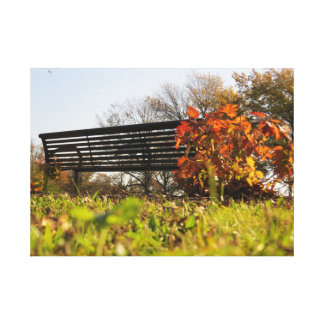 Leisure during the Fall Canvas Prints