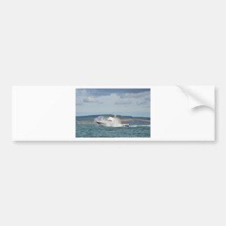 Leisure Fishing Boat Bumper Sticker