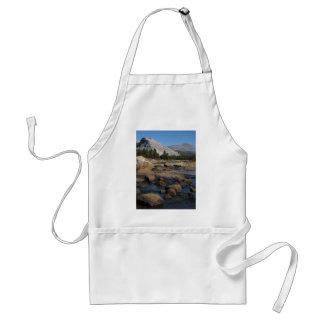 lembert dome and rocks standard apron