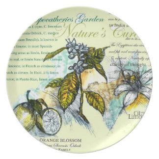 Lemon Blossoms - Melamine Plate