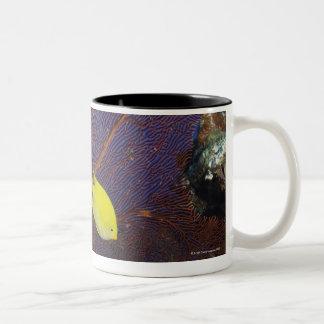 Lemon damsel Two-Tone coffee mug