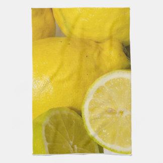 Lemon dish cloth