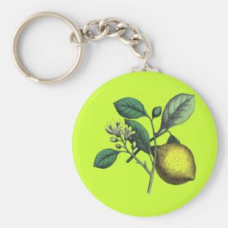 """Lemon, """"fruit and flower"""" key chains"""