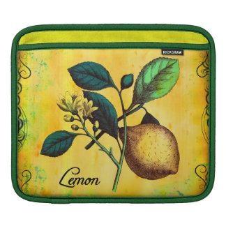 Lemon Fruit Flowers Leaves Vintage Botanical iPad Sleeve