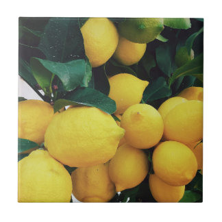 Lemon fruit tree tile