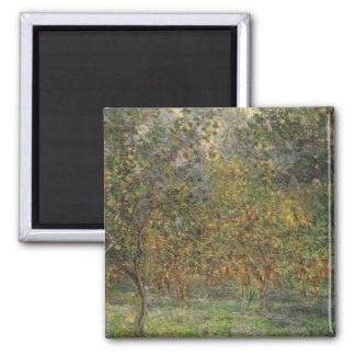 Lemon Grove in Bordighera by Claude Monet Square Magnet