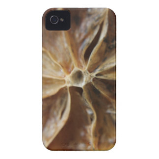 Lemon iPhone 4 Case
