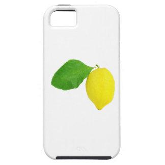 Lemon iPhone 5 Cases
