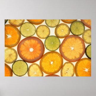 Lemon Lime Orange Grapefruit Citrus Fruit Slices Poster