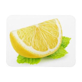 Lemon & mint magnet