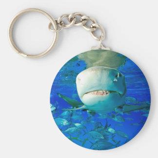 "Lemon Shark ""Say Cheese"" Key Chains"