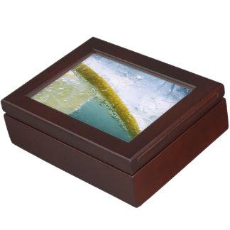 Lemon Slice Keepsake Box
