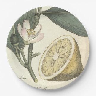 Lemon Tree 9 Inch Paper Plate