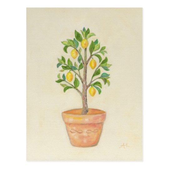 Lemon Tree postcard
