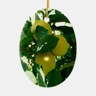 Lemon Tree Yellow Green Ornament